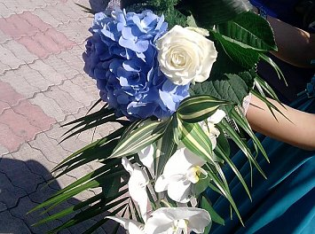 Floraria Adalexa Nunta Pitesti